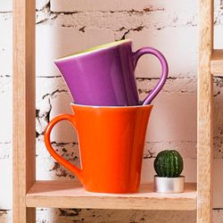 oxford-daily-caneca-tulipa-bowl-bicolor-0265-01